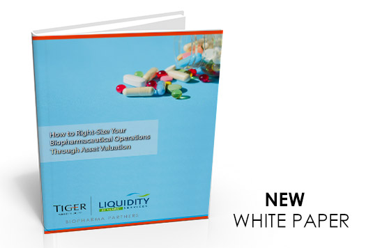 Download Whitepaper; How to Right-Size Your Biopharmaceutical Operations Through Asset Valuation